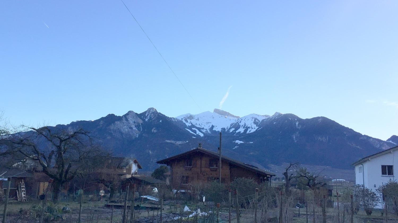 Voyage suisse TA CFA MFR Puy-Sec Ferme PERRIN Taureaux et Restaurant les Poneys