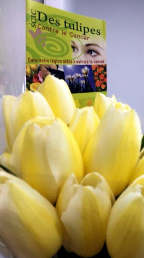 Cancer bouquet tulipes LionsClub