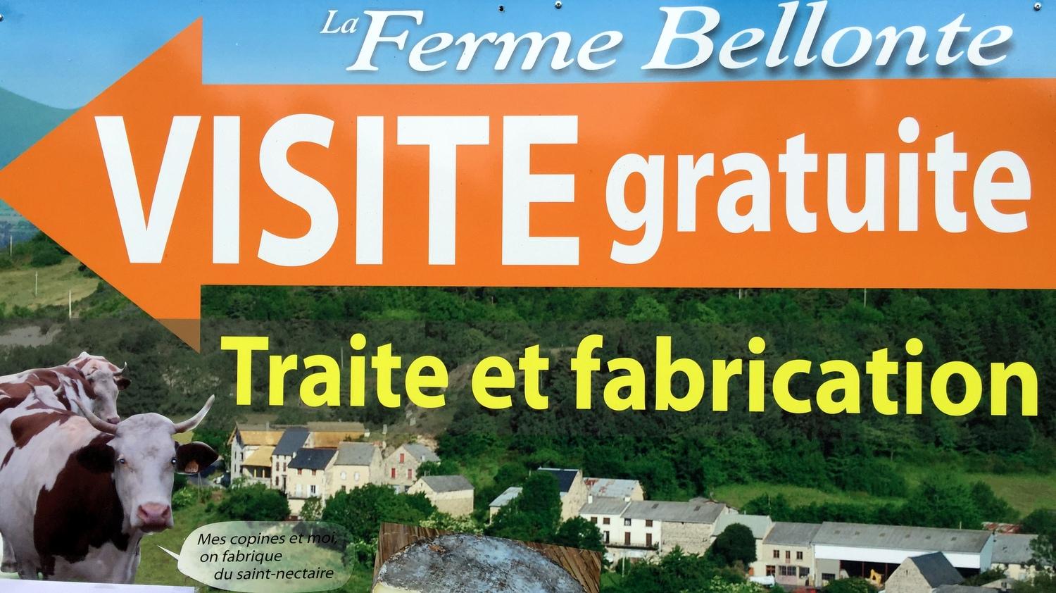 La Ferme de Bellonte Fabrication de fromage Saint-Nectaire