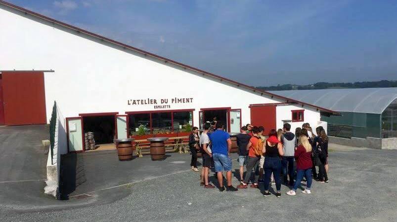 Visite Piment Espelette Pays Basque 2018