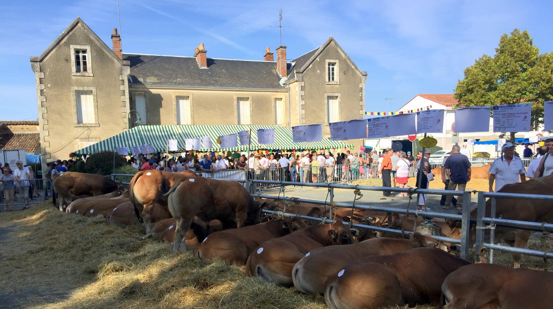 Septembre Fête et foire Vendée