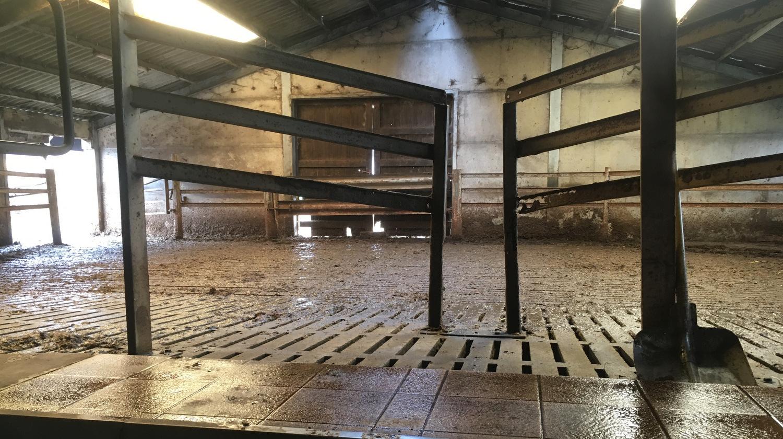 Diversification agricole ferme Deknudt TA Belgique 2019