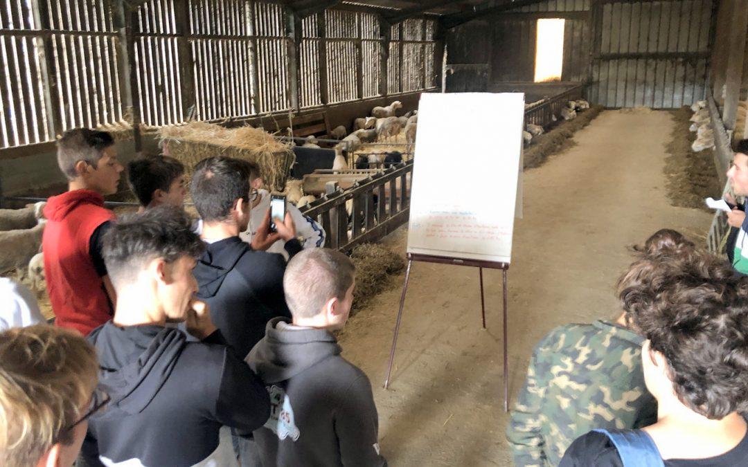 visite élevages hors sol cavac