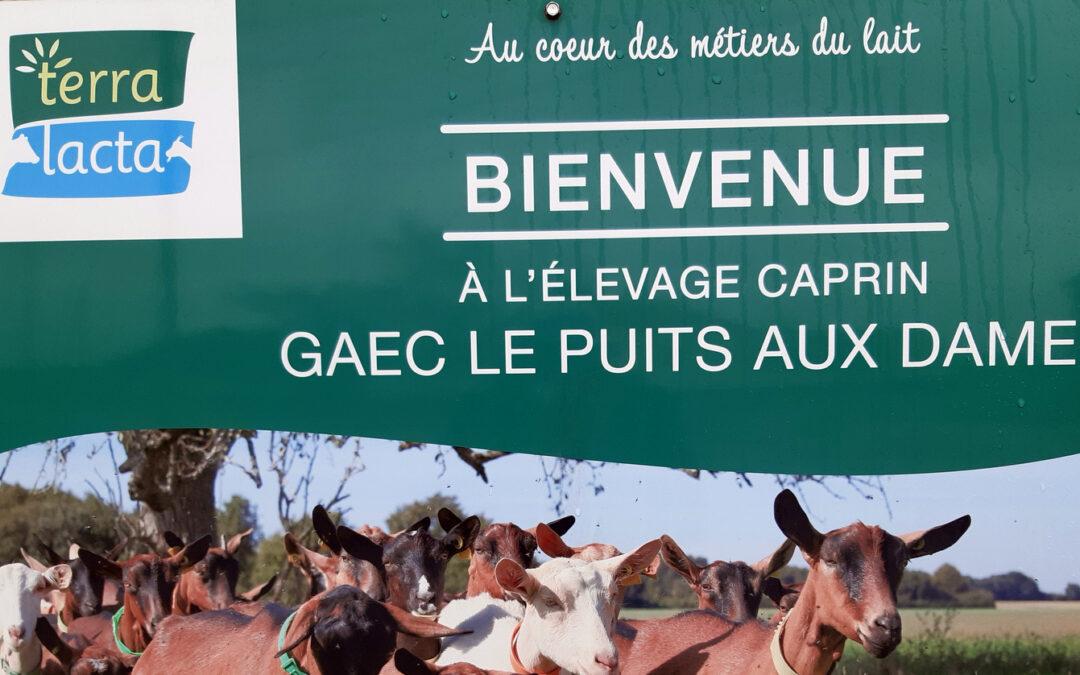 Bienvenue au GAEC Le Puits aux Dames