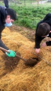 Les trous sont creusés sur des cordons de paille -MFR PUY SEC-
